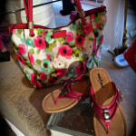accessories-purse_shoes
